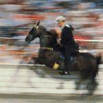 Walking Horse National Celebration